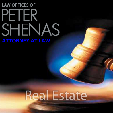 Web Development for Peter Shenas Attorney At Law